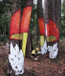 El bosc pintat portada